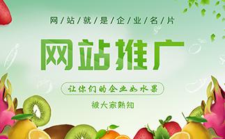 苏州网站推广